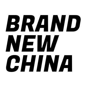 Driving from China to Holland using Chinese brands only